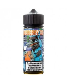 FROST DROZD Blueberry ice 120ml